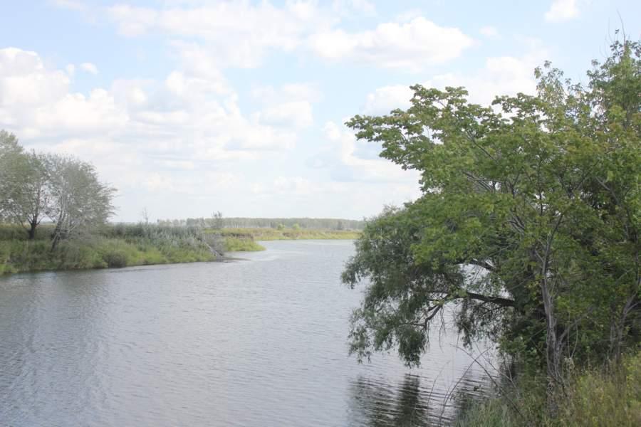 Вверх по реке Тобол. Курган.