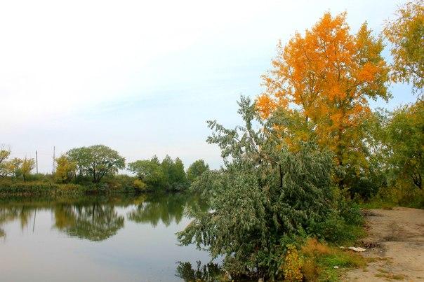 Ветер дул, деревья гнулись - осень снова к нам вернулась!