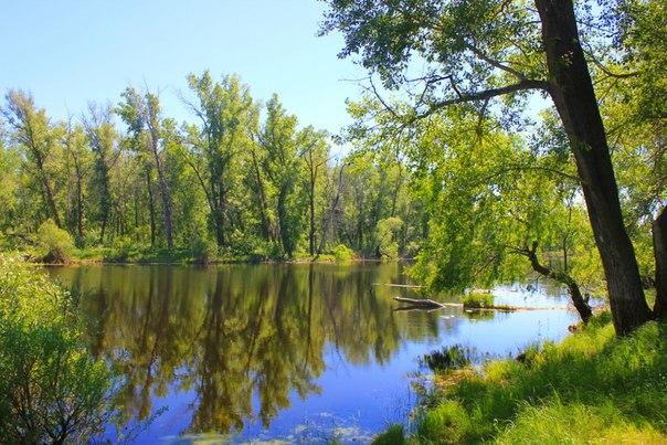 Лабиринты притоков реки Тобол